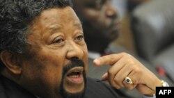 Председатель Комиссии Африканского Союза Жан Пинг