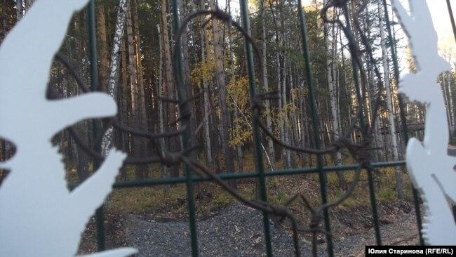 Инсталляция на заборе с колючкой