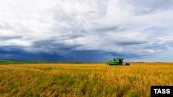 Рекордного урожая, как в 2016-ом, на следующий год может и не быть