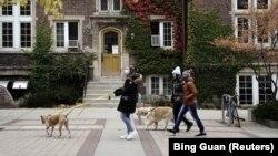 Tri gra ecin në rrugët e Uiskonsinit në SHBA