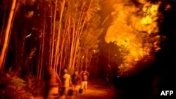 Zjarr në Santiago, Portugali.