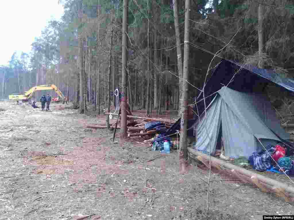 Работы идут уже рядом с лагерем в в лесу в Жуковском
