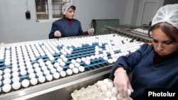Armenia - Workers at a poultry factory in Yerevan, 5Dec2012.