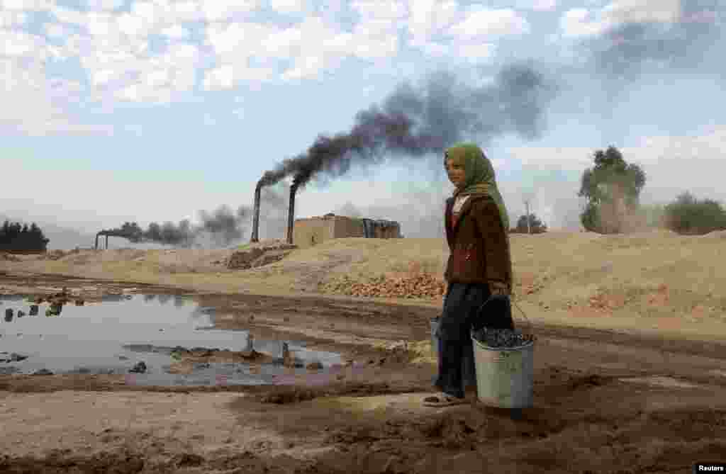 Aisha 11, carries coal to be used for cooking and heating from a brick-making factory in Jalalabad, Afghanistan. (Reuters/Parwiz)