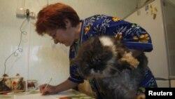 Голосование на дому в Белоруссии: с котом в руках
