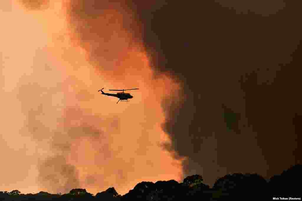 Вертоліт гасить пожежу в містечку Білпін, що за 90 кілометрів від Сіднея.  За повідомленнями метеорологічного бюро Австралії, середня температура повітря на континенті з 1910 року піднялася на один градус за Цельсієм. Вчені вважають, що підвищення температури і суха погода сприятимуть поширенню вогню і виникненню нових пожеж