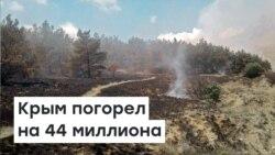 Крым погорел на 44 миллиона | Доброе утро, Крым
