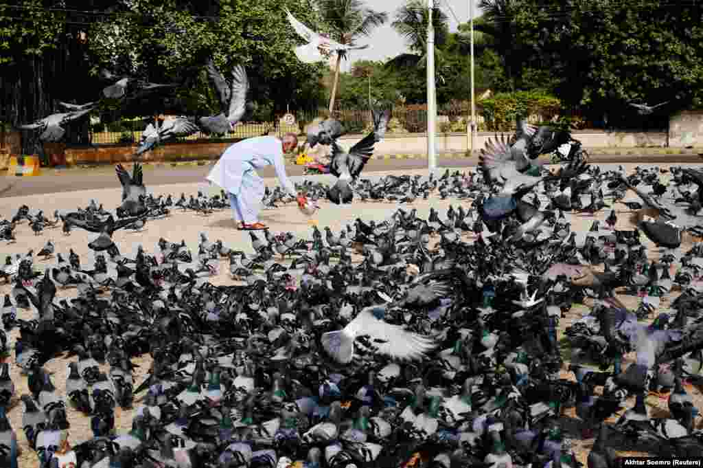 A man spreads a bucket of feed for pigeons, as many believe feeding the birds brings good luck, after Friday Prayers during the holy month of Ramadan in Karachi, Pakistan, on June 1. (Reuters/Akhtar Soomro)