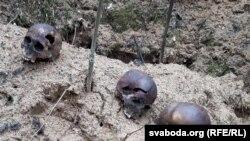 Жыхары вёскі Хайсы знайшлі ўлесе чалавечыя парэшткі