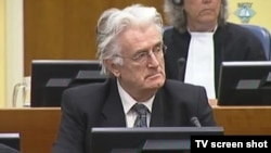 Former Bosnian Serb leader Radovan Karadzic at his trial in The Hague in mid-November