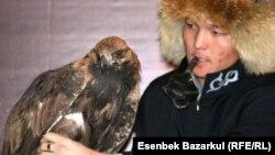 ЕҚЫҰ саммитіне Қарағандының Шет ауданынан арнайы шақырылған құсбегі Дархан Төребаев қыран құсымен бірге. Астана, 1 желтоқсан 2010 ж.
