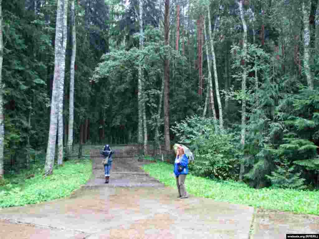 """Частка лесу за межамі дзейнага мэмарыялу ў народзе называецца """"далінай сьмерці"""". Магілы яшчэ чакаюць упарадкаваньня."""