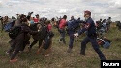 КПП Рьоске на угорсько-сербському кордоні: поліцейські намагаються зупинити натовп нелегальних мігрантів із Близького Сходу. 8 вересня 2015 року
