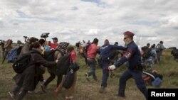 Поліцейські намагаються зупинити натовп нелегальних мігрантів із Близького Сходу на угорсько-сербському кордоні, 8 вересня 2015 року