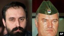 Хаџиќ и Младиќ
