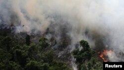 دولت برزیل هشدار داده که شش ایالت این کشور ممکن است با پیشروی آتشسوزی در معرض خطر قرار بگیرند.
