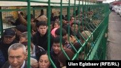 Кыргыз-казак чек арасы.