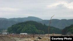 Япония -- Берег моря после цунами в префектуре Ивате, 03 мая 2011. Фото Мисато Косуге
