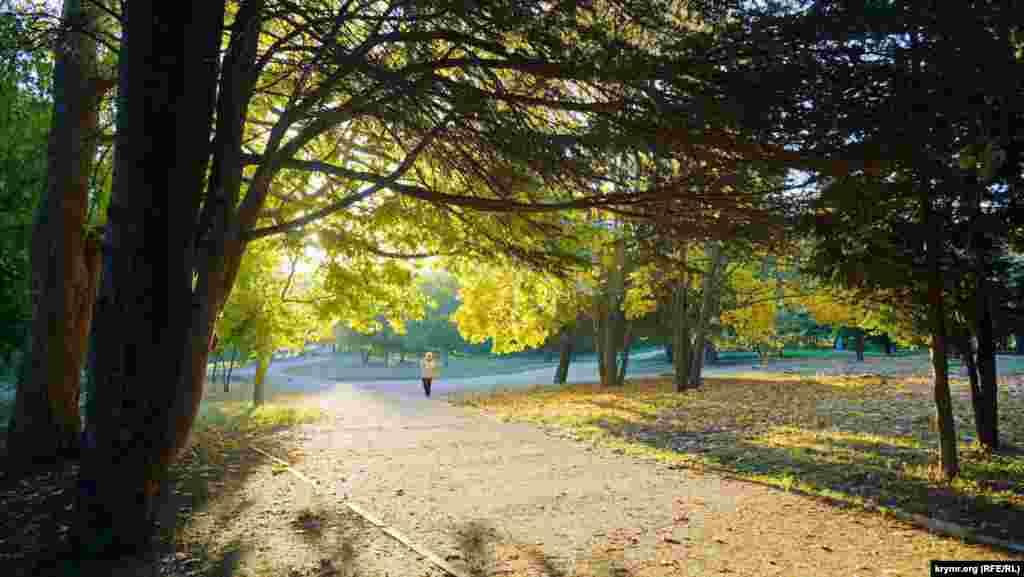 Ботанический сад «Крымского федерального университета им. Вернадского»