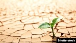 Устойчивое развитие немыслимо без внимания к экологии