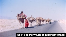 Pashtun Kuchis (nomads) on the road from Jalalabad to Kabul (Elliot and Marty Larson's photo from the 1970s).