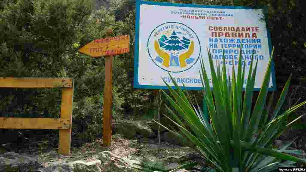Тропа Голицына пересекает ботанический заказник «Новый Свет»