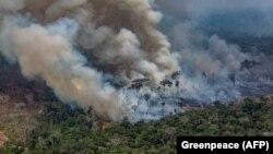 1970 yildan beri Amazonka havzasining 5 million kvadrat kilometr hududi yo'q qilindi