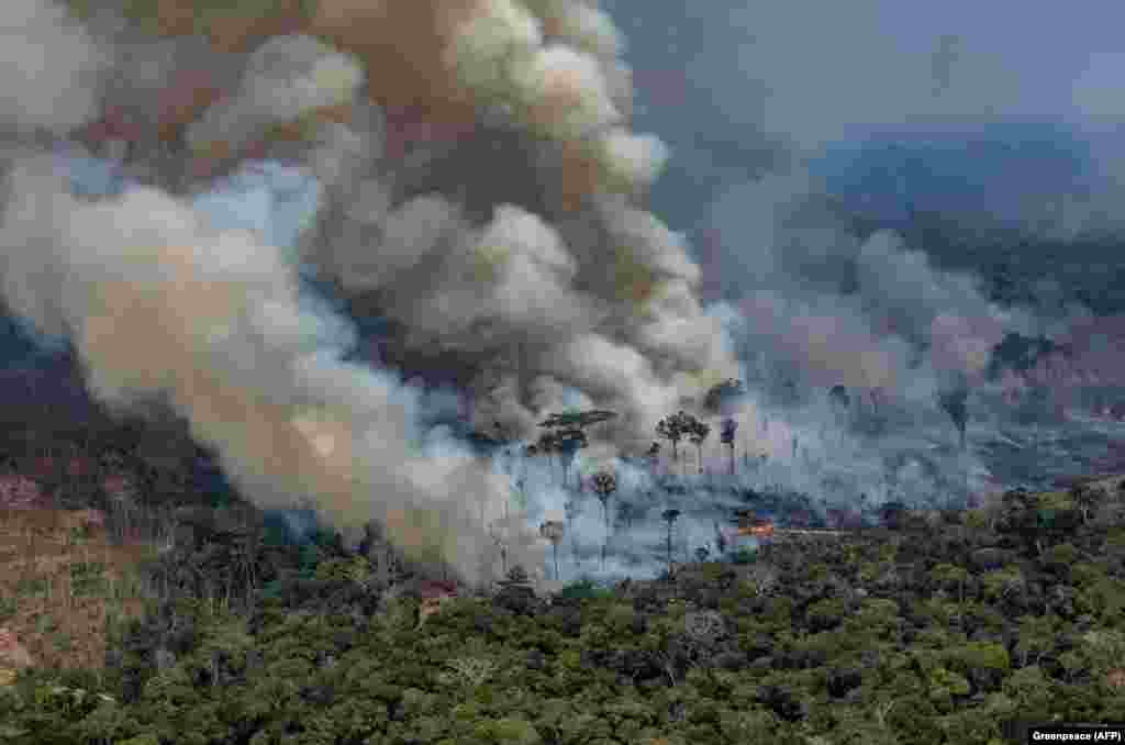 Smoke billows from forest fires in Rondonia State in the Amazon basin in northwestern Brazil. A record number of fires are hitting the South American rain forest, many of them in Brazil, prompting international concern because of the Amazon's importance to the global environment. (AFP/Victor Moriyama/Greenpeace)
