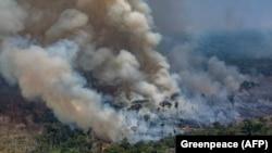 Zjarret në Amazonë