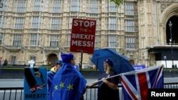 Протесты у здания парламента в Лондоне