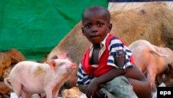 Afrika, arxiv fotosu
