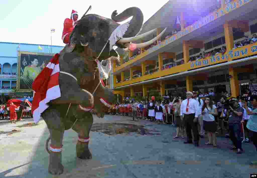 An elephant dressed in a Santa Claus costume performs for students ahead of the Christmas festival at a school in Thailand's Ayutthaya province on December 24. (AFP/Pornchai Kittiwongsakul)