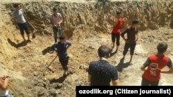 Старшеклассники 29-й школы в Кургантепинском районе Андижанской области занимаются строительством парниковых лимонариев.
