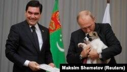 Türkmenistanyň prezidenti Gurbanguly Berdimuhamedow we Russiýanyň prezidenti Wladimir Putin. 11-nji oktýabr, 2017 ý. Soçi şäheri