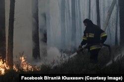 Гасіння пожежі у лісі. Житомирщина. Фото Віталія Юшкевича. 20 квітня 2020 року