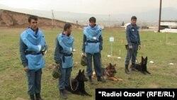 Минарӯбони тоҷик. Акс аз бойгонӣ