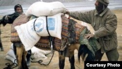 A man loads a donkey with food from the UN's World Food Program in Badakhshan Province in Afghanistan earlier this year.