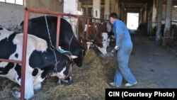 Poljoprivredno gazdinstvo Tarčin