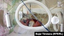 Një foshnje në Klinikën e Neonatologjisë në QKUK.