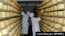 Заборона на ввезення українського сиру є політично вмотивована – фахівці