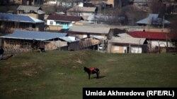 Өзбек ауылдарының бірі. (Көрнекі сурет)