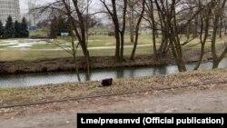 Белорусские СМИ 3 января сообщили о находке сумки с отрезанными конечностями человека