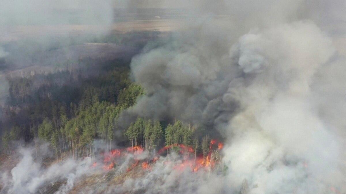 Зеленский подписал закон об усилении ответственности за поджог сухой травы