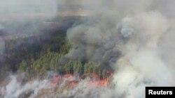 Лісова пожежа в зоні відчуження навколо Чорнобильської АЕС, 12 квітня 2020 року