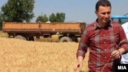 Премиерот Никола Груевски на жетва во Пелагонија.