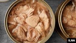 به گفته انجمن صنایع کنسرو ایران، بهای هر قوطی کنسرو تُن ماهی به ۱۴ تا ۱۸ هزار تومان رسیده است