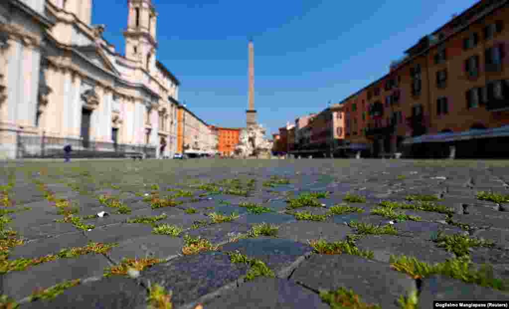 Grass sprouts between the cobbles of Rome's famous Piazza Navona on April 9, weeks into a lockdown that has virtually ended tourist foot traffic.