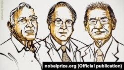 Fituesit e Çmimit Nobel në Kimi.