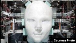 Lice robota, ilustrativna fotka