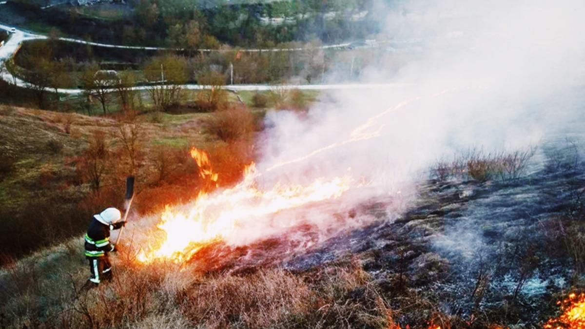 От 42 до 102 тысяч гривен – Кабмин предлагает увеличить штрафы за поджог сухой растительности